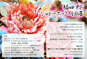 福田桜 シャドーボックス個展の画像