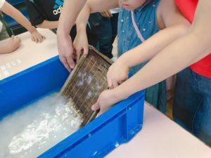 日本大好きプロジェクトによる伝統文化体験ワークショップ「紙漉き」の画像